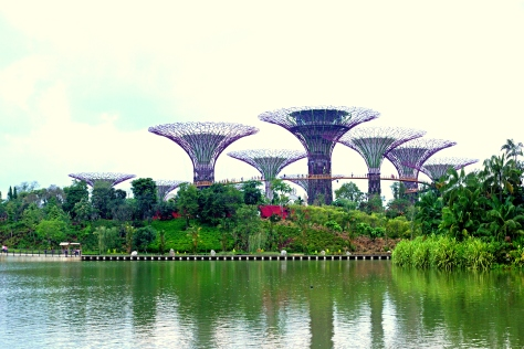 Supertree_Grove_and_Dragonfly_Lake,_Gardens_by_the_Bay,_Singapore_-_20120617-02